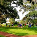 People doing yoga in the shade of trees on grass