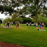 People doing yoga on green grass under large trees