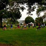 People doing yoga in the shade of large trees outside on the grass